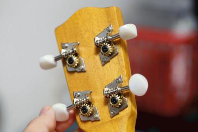 ukulele04.jpg